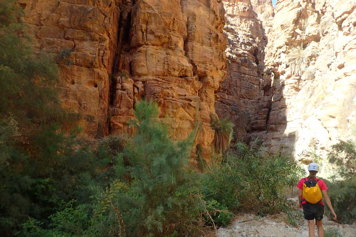 Wadi Karak