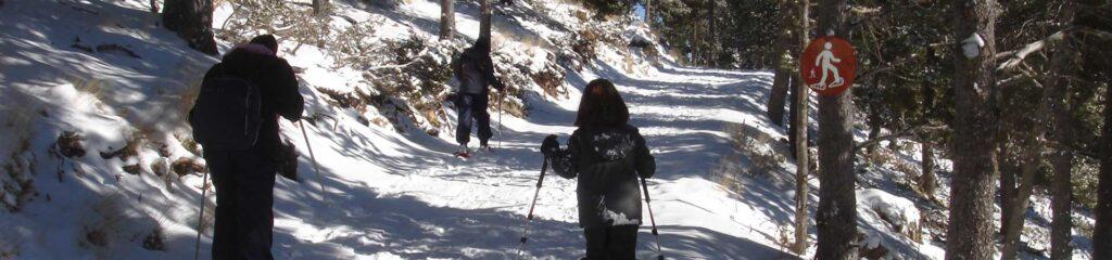 raquetes de neu amb nens a Port del Comte