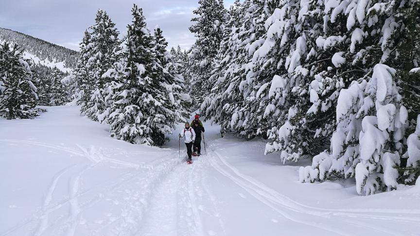 rutes amb raquetes de neu al port del comte