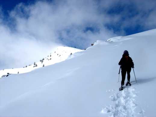 Excursió amb raquetes de neu mirador Port del Comte
