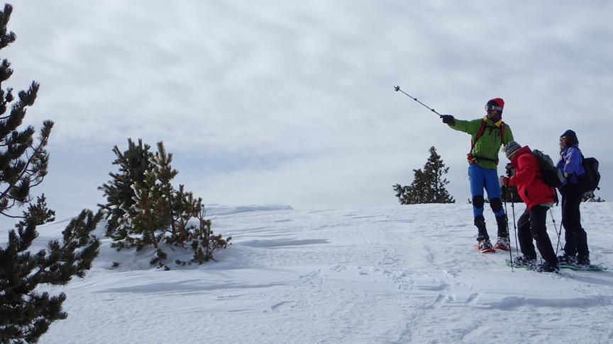 excursions amb raquetes de neu a Port del Comte