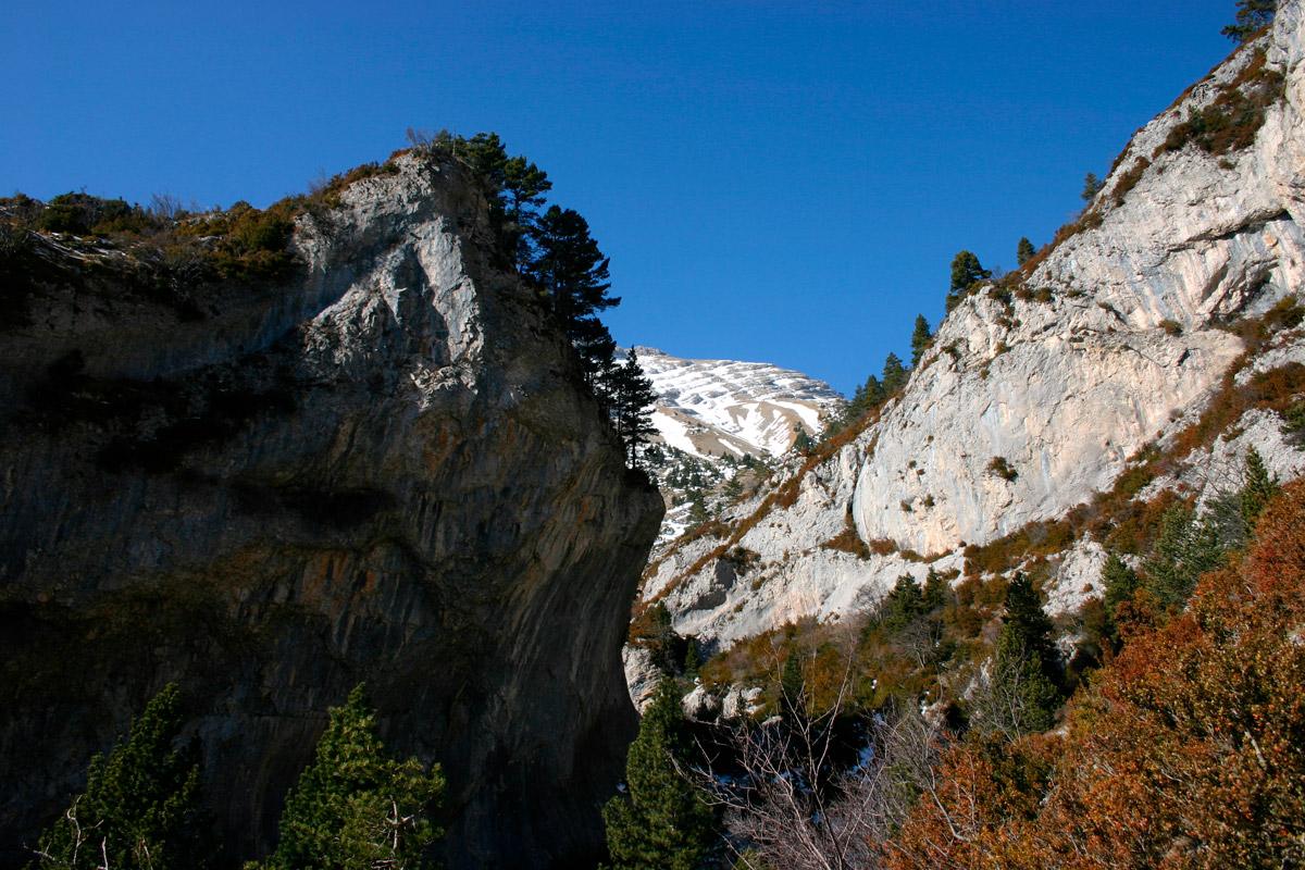 Torrent de la Muga pont de roca a prop de bagà
