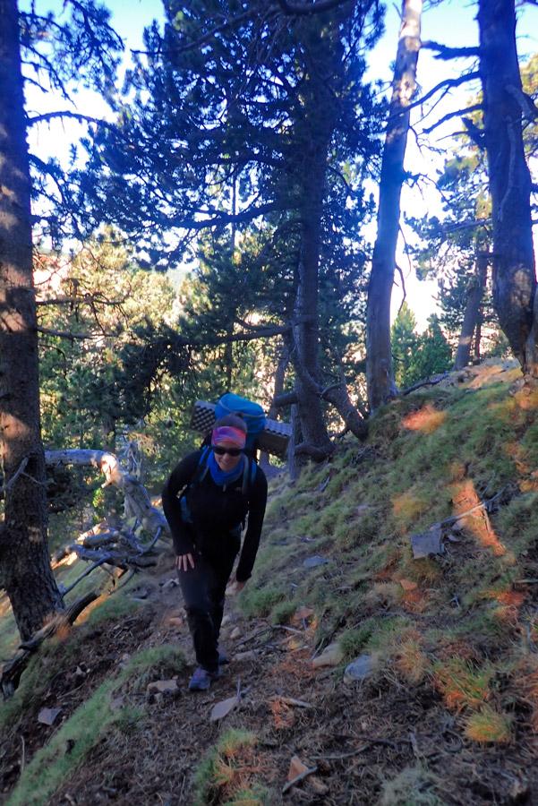 pujant a la Serra del Gall, el Verd