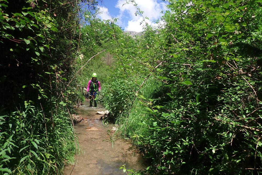 descens de l'afluent del barranc de bóixols